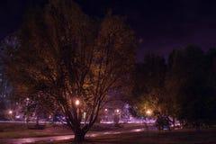 för felik provinsiell kort liknande saga latvia för julstad natt till Arkivfoto