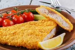 för filéfisk för bakgrund olik white för serie för bild för mat Arkivbild