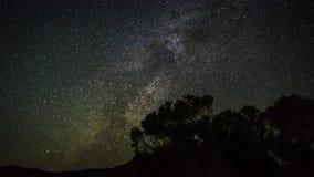 för filmfilm för 4k Timelapse gem av rörande stjärnaslingor i natthimmel Vintergatangalaxen som roterar över träden i sommar stock video