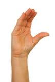 för fingerhand för alfabet c stavning för bokstav Royaltyfri Foto