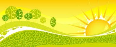för fjädersolnedgång för skog grön yellow Royaltyfri Bild
