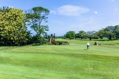 För flaggahål för golf scenisk kurs för grön spelare arkivbilder