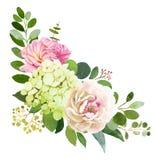 för fokusförgrund för 3 bukett bröllop Pionen vanlig hortensia och steg royaltyfri illustrationer