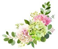 för fokusförgrund för 3 bukett bröllop Pionen vanlig hortensia och steg blommor stock illustrationer