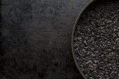 för frösolros för bakgrund svart textur Arkivfoton