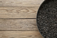 för frösolros för bakgrund svart textur Royaltyfri Fotografi