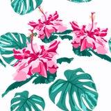 För fria händerteckning för vektor skrivar sömlösa trendiga grafiska blommor ut för hibiskus med palmträdmonsterasidor på mintkar vektor illustrationer