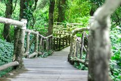 För gångbanatrottoar för bro wood granskning royaltyfri fotografi
