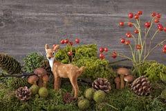 för garneringdruvor för höst kastanjebrunt för oktober trä pomegranate Arkivfoton
