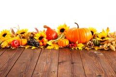 för garneringdruvor för höst kastanjebrunt för oktober trä pomegranate royaltyfria foton