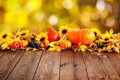 för garneringdruvor för höst kastanjebrunt för oktober trä pomegranate royaltyfri fotografi