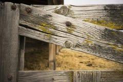 För Gate Farm Barn för Knotty staket mossa Wood korn royaltyfria bilder
