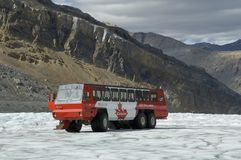 is för glaciär för athabascabussutforskare arkivfoto