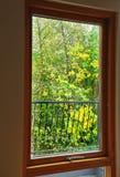 för gräsgreen för höst även väder för sikt för leaves orange tyst royaltyfri fotografi