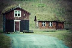 För grästak för norrman typisk hus för land royaltyfri fotografi