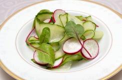 för grönsallatmix för gurka ny grönsak för tomat för sallad royaltyfri fotografi