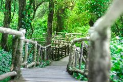 För granskningstrottoar för bro wood gångbana arkivbild