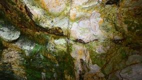 5 för grottaårhundrade för bin ljusa frescos för ägg färger räknade har honung som hålls målning princessesprocessionen som föres arkivfilmer