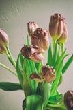 För grupptulpan för tappning stil bleknade blommor Arkivfoto