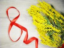 För gul kort för marsch för bakgrund buskevår för mimosa blom- 8 Fotografering för Bildbyråer