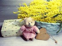 För gul kort för marsch för bakgrund buskevår för mimosa blom- 8 Royaltyfria Bilder