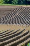 För gyttjajord för jordbruk brunt fält i en vattenflod Arkivfoton