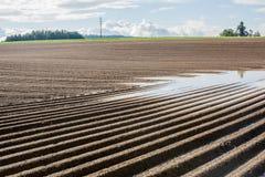 För gyttjajord för jordbruk brunt fält i en vattenflod Arkivbilder