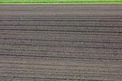 För gyttjajord för jordbruk som brunt fält plogas nytt Royaltyfria Bilder