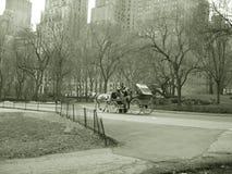 för hästnyc för buggy central ritt för park fotografering för bildbyråer