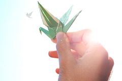för handholding för fågel kulört papper s för man Royaltyfri Fotografi