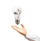 för handlampa för kula torr solros Arkivfoto