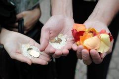 för handpetals för mynt steg full rice Royaltyfri Foto