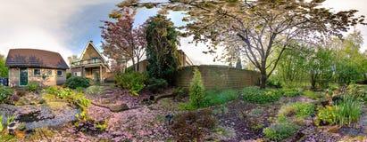 För hemträdgård för körsbärsröd blomning panorama Arkivbild