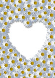för hjärta white upprätt Royaltyfria Bilder