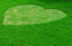 för hjärtabild för gräs grön form Arkivfoto