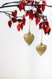 för hjärtapink för jul guld- red arkivfoto