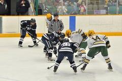 för hockeyis för clarkson modig universitetar för ncaa Royaltyfri Foto