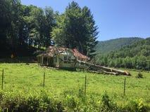 För hus träd kontra Arkivfoton