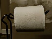 för hygienpapper för cleaning home toalett för produkter arkivbild