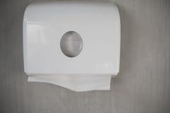 för hygienpapper för cleaning home toalett för produkter Arkivfoton