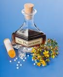 för hypericumpills för extract homeopathic växt royaltyfria bilder
