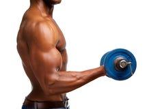 För idrottshallvikt för muskulös svart man lyftande övning för bicep Arkivbild