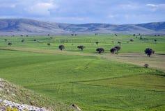 för ilekazakhstan för alatau härlig sikt för nationalpark berg Royaltyfria Foton