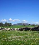 för ilekazakhstan för alatau härlig sikt för nationalpark berg Fotografering för Bildbyråer