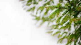 för illustrationvektor för bakgrund härlig vinter Arkivbild