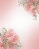 för inbjudanpink för design blom- bröllop Royaltyfria Foton