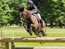 För Indiana Limpus för Houghton internationell hästförsök brons ridning Fotografering för Bildbyråer