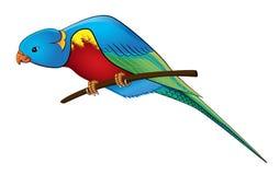 för indonesia för bali fågelfilial papegoja park Arkivfoto