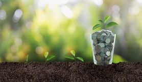 För inskrifträddning för pengar (mynt) affär, besparing, tillväxt, econ Arkivfoto