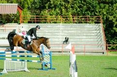 För jockeyritt för ung man häst och hopp härlig brun över klykan i den rid- sporten som är svartvit med hög kontrast Octob Fotografering för Bildbyråer